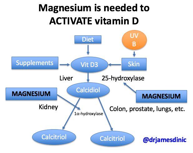 """James DiNicolantonio on Twitter: """"Magnesium is needed to activate vitamin D.  Make sure you magnesium intake is adequate is you want your vitamin D to  work.… https://t.co/BDHKpvwZTG"""""""