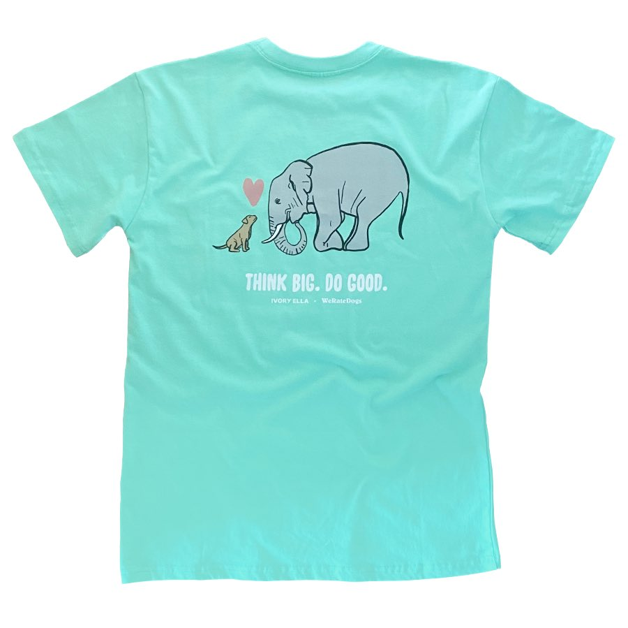 We made a new shirt in partnership with @shopivoryella! 100% of net proceeds will go to Hearts & Bones Rescue 💕🐘🐶 Available Now weratedogs.com/products/think…