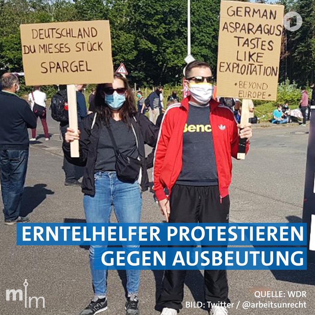 #Bornheim