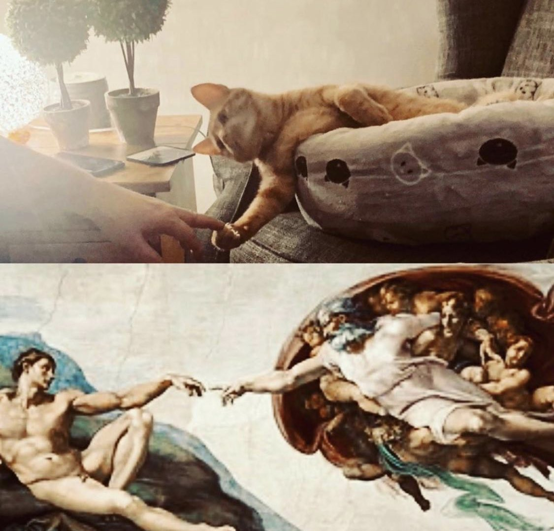 @thecatreviewer My husband and our cat Malcolm have used lockdown & recreated famous art