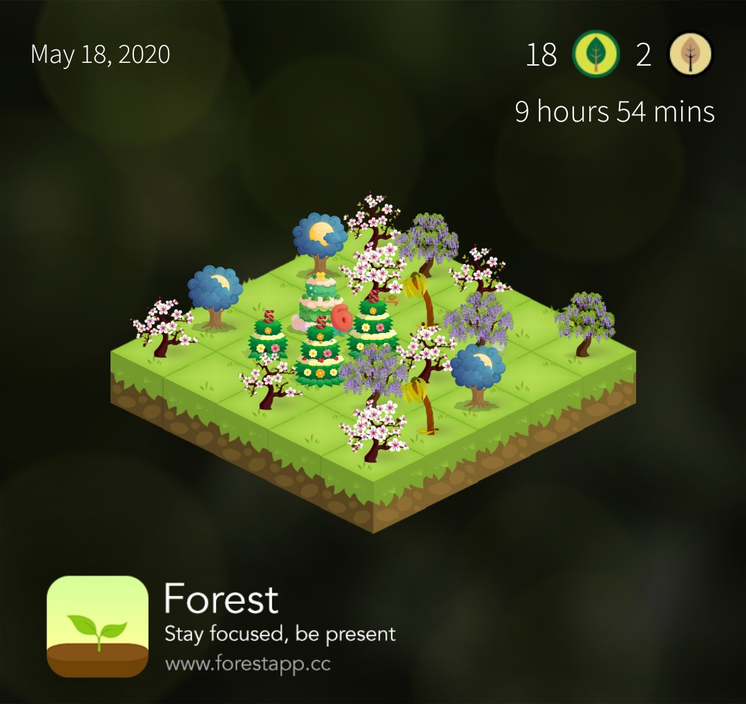 ~ Daily study recap : 9.54 / 10 hours Almost there ! that's all for today, taking the evening off I'm exhausted #forestapp #focus #ForestStudyBuddypic.twitter.com/N9Wvdt5Ltv