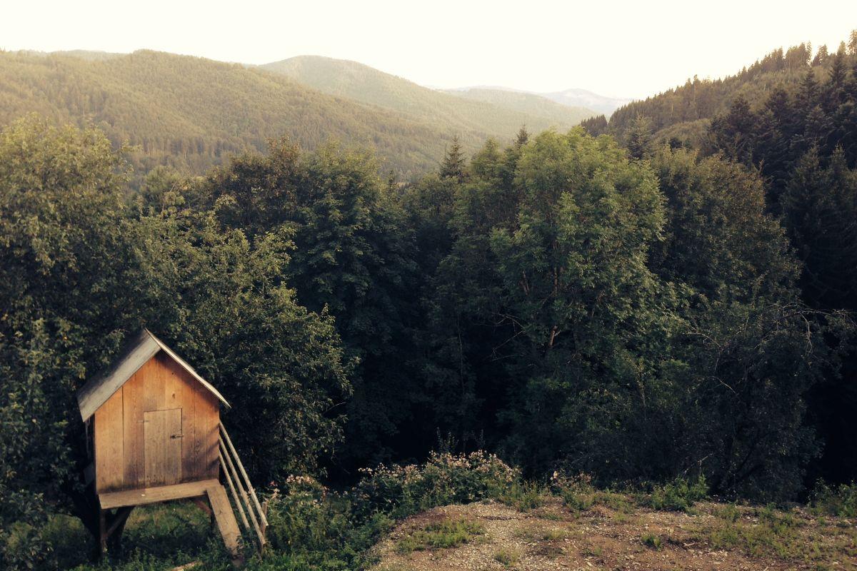 Wandern in Bad Kleinkirchheim https://www.wanderparadies.de/wandern-bad-kleinkirchheim/… #Bad #grid #Kärnten pic.twitter.com/nNSXEfwHUg