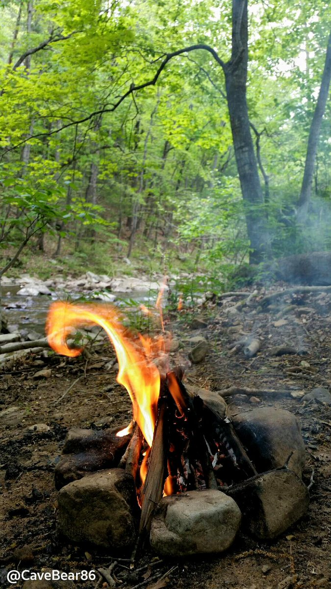 It was hot outside today, and the rain made it muggy out. Fire kept the bugs away though, and the creek kept me cool. #camping #hiking #bushcraft #outdoors #nature #WestVirginiapic.twitter.com/X3i5bDumrR