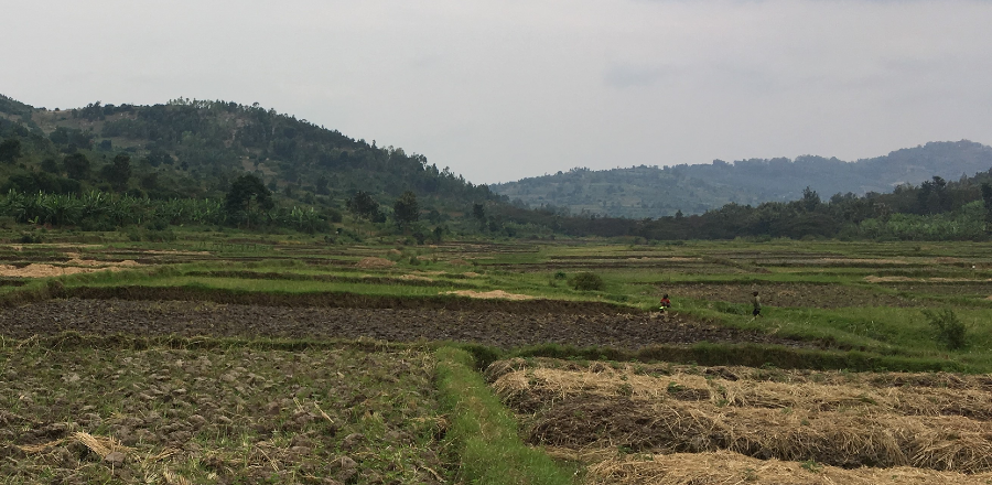 🔬| Providing small loans to farmers in developing countries, who are struggling with the impact of #ClimateChange, can significantly improve their livelihoods, according to new research. Read more 👇 🔗bit.ly/3dX6zh3