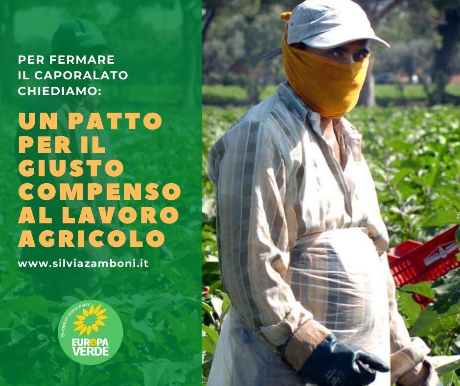Un nuovo articolo (Le proposte di Europa Verde Emilia-Romagna per fermare il fenomeno del caporalato) è su Silvia Zamboni - silviazamboni.it/le-proposte-di…
