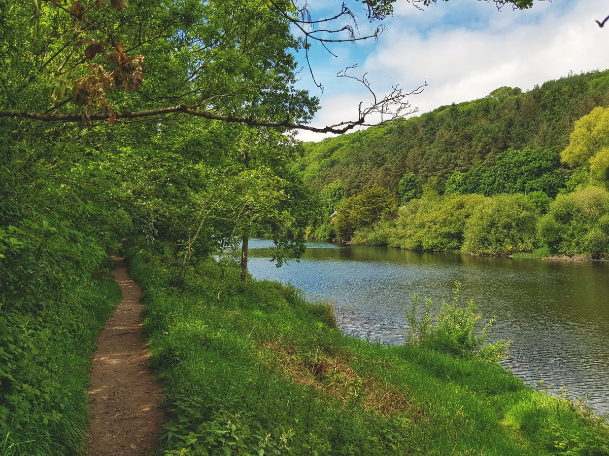 From today's wander through the Reg Park, Ballincollig...  #purecork #outdoors pic.twitter.com/SvXfeB301J