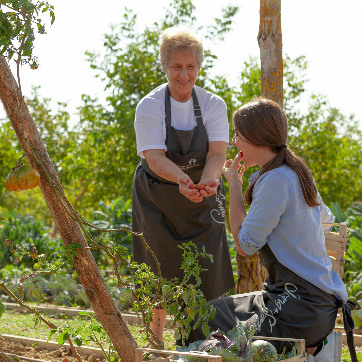 Our Mamma Olga is a chef, teacher and remarkable storyteller. Follow her through our garden as she spins one of her magical tales...⁠ 🌽🍅🥕 ⁠ ⁠ #BorgoSantoPietro #BorgoSantoPietroLiving https://t.co/FwGfy7ey2y