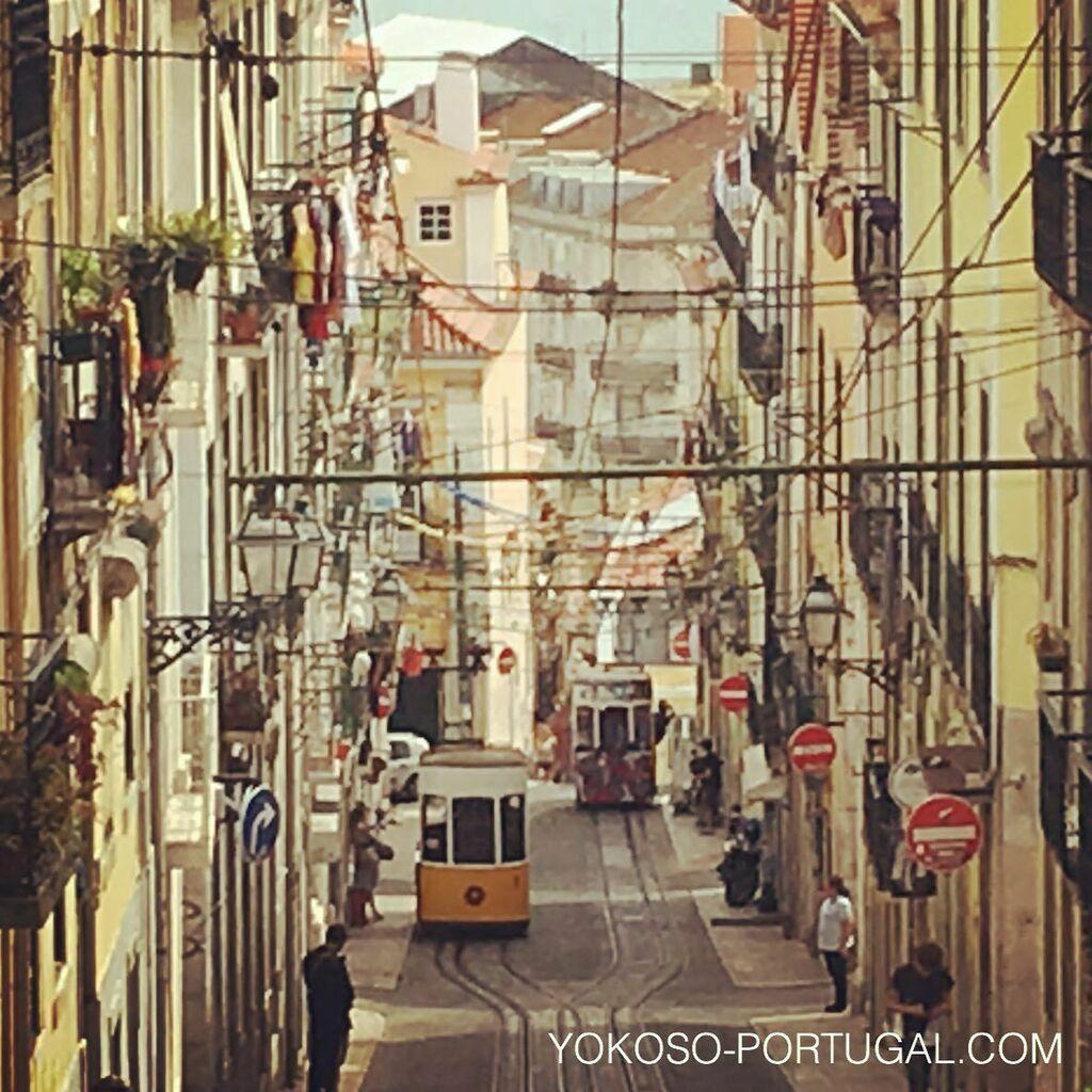 test ツイッターメディア - 今週から第2段階目の緩和となり、小さなお店やレストラン、カフェがオープン可能となりました。レストランは50%が定員となります。また引き続き公共の場所、交通機関ではマスクの着用が必要です。 #ポルトガル https://t.co/g3luq9cVlc