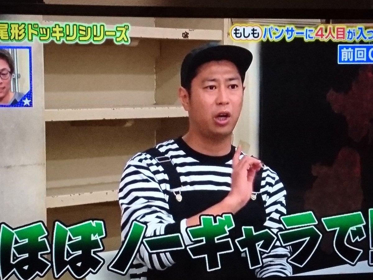 パンサー コヨーテ