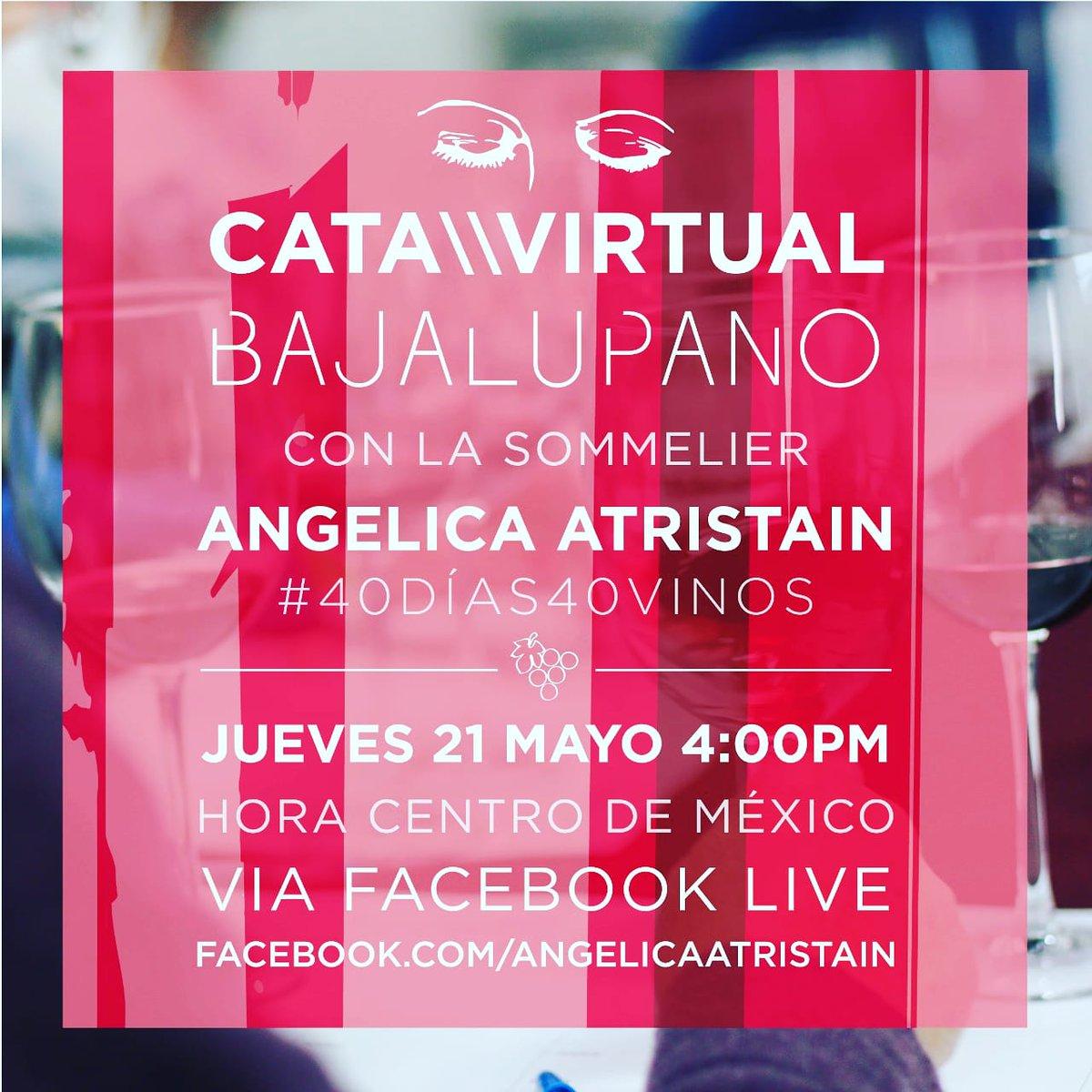 La cofundadora y sommelier de @vinoparaisomx este Jueves catará nuestro Cabernet Sauvignon 2015, si no han visto la cata del Syrah 2016 los invitamos a visitar su página @aatristainm  #catavirtual #bajalupano #valledeguadalupe #vinomexicano #cabernetsauvignon #iglivepic.twitter.com/68ZjS2NART