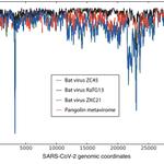 Image for the Tweet beginning: A meta-metagenomic approach examining close
