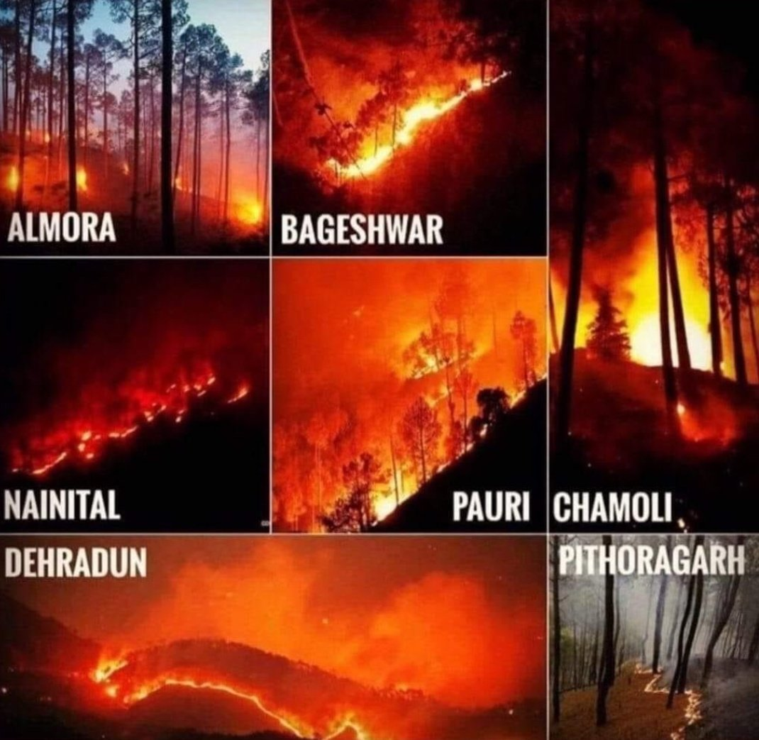Fire In Uttarakhand