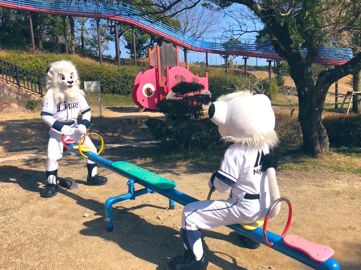いつかの レオとライナ。なんか ライナが おもいみたいじゃん‼︎‼︎たいじゅうは ヒ・ミ・ツ だけど…レオのほうが おもい!(ライナしらべ。)#seibulions #埼玉西武ライオンズ