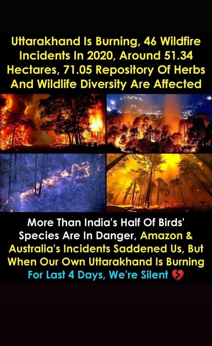That is so sad :( @PMOIndia @BJP4UK @INCUttarakhand @SrBachchan @NehaDhupia @IndianFilm @CelebrityIndian @IndianCelebNewspic.twitter.com/3p8CkH5gyj