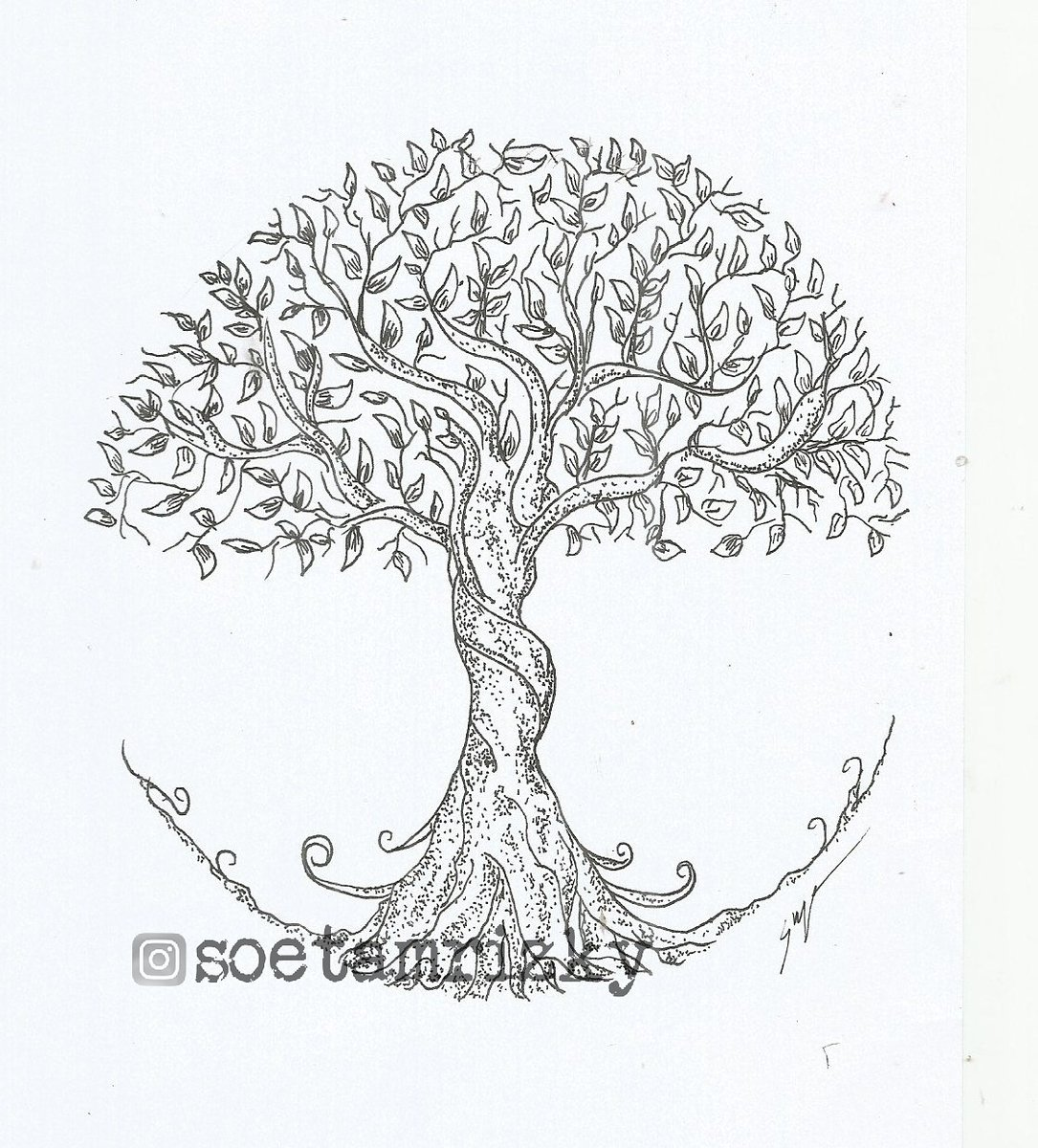 Soetam Rizky On Twitter Big Tree Ink Tree Instablackandwhite Art Illustration Drawing Draw Picture Artist Sketch Sketchbook Trees Ink Inkedartgroup Artsy Instaart Instagood Gallery Creative Bonsai Photooftheday Instaartist
