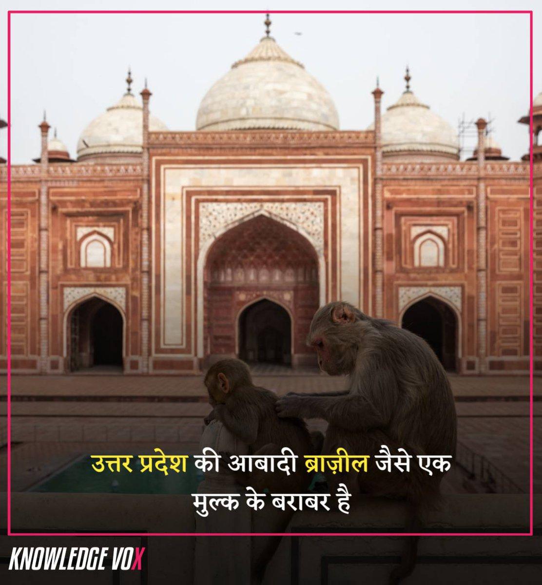 उत्तर प्रदेश की आबादी ब्राज़ील जैसे एक मुल्क के बराबर है  #Facts #Hindi #HindiFacts #RochakTathya #KnowledgeVoxpic.twitter.com/bh3NU5U1BC