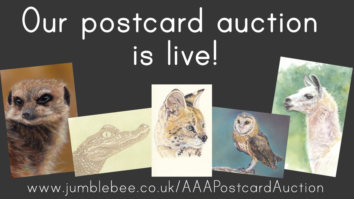 🎉 Our postcard auction is live! 🎉 We've 50 pieces of original art by our members, just waiting to be won! With all proceeds being donated to the fantastic @ARKwildlifepark, we'd love it if you could help us spread the word by giving this a RT!   https://t.co/8HuI8Gxvd0 https://t.co/mOstQwNz9O