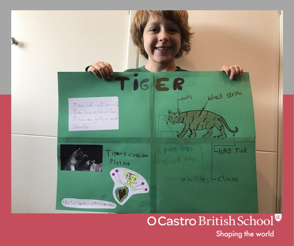Our Year 1 students are learning the er sounds in Phonics and in science are learning about habitats. They linked these together to learn all about tigers for literacy  We love it!   #year1 #5años #infantil #phonics #literacy #science #morethanjustaschool #colegiosvigopic.twitter.com/4CkTj6SBZ4