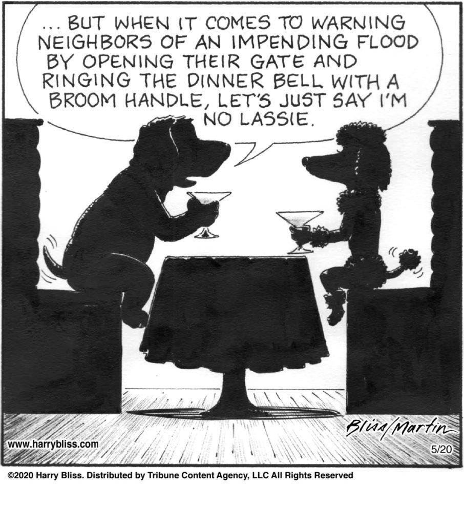 Today's cartoon from @Blisscartoons and me.