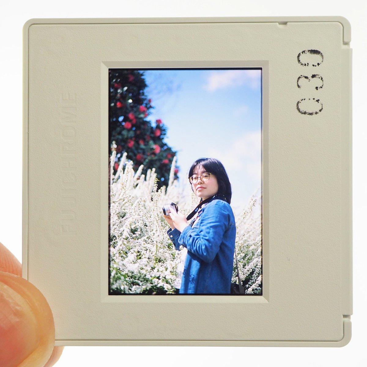 [I, portraited]  :Nikon FA, FUJIFILM PROVIA100F #いちにちいちまい #ファインダー越しの私の世界 pic.twitter.com/voPqTUAYC9