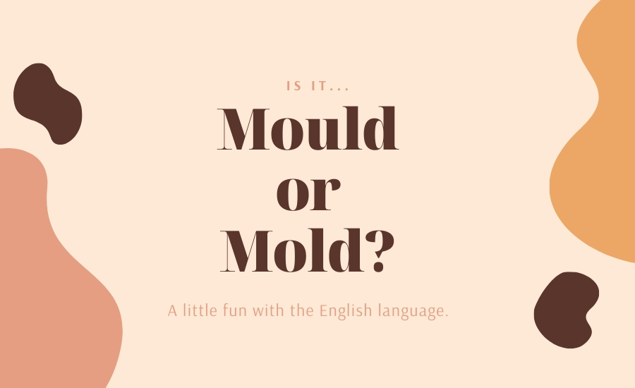 The answer is: Yes https://www.randrmagonline.com/articles/88942-is-it-mold-or-mould…  #mold pic.twitter.com/7y1qYEYmIB
