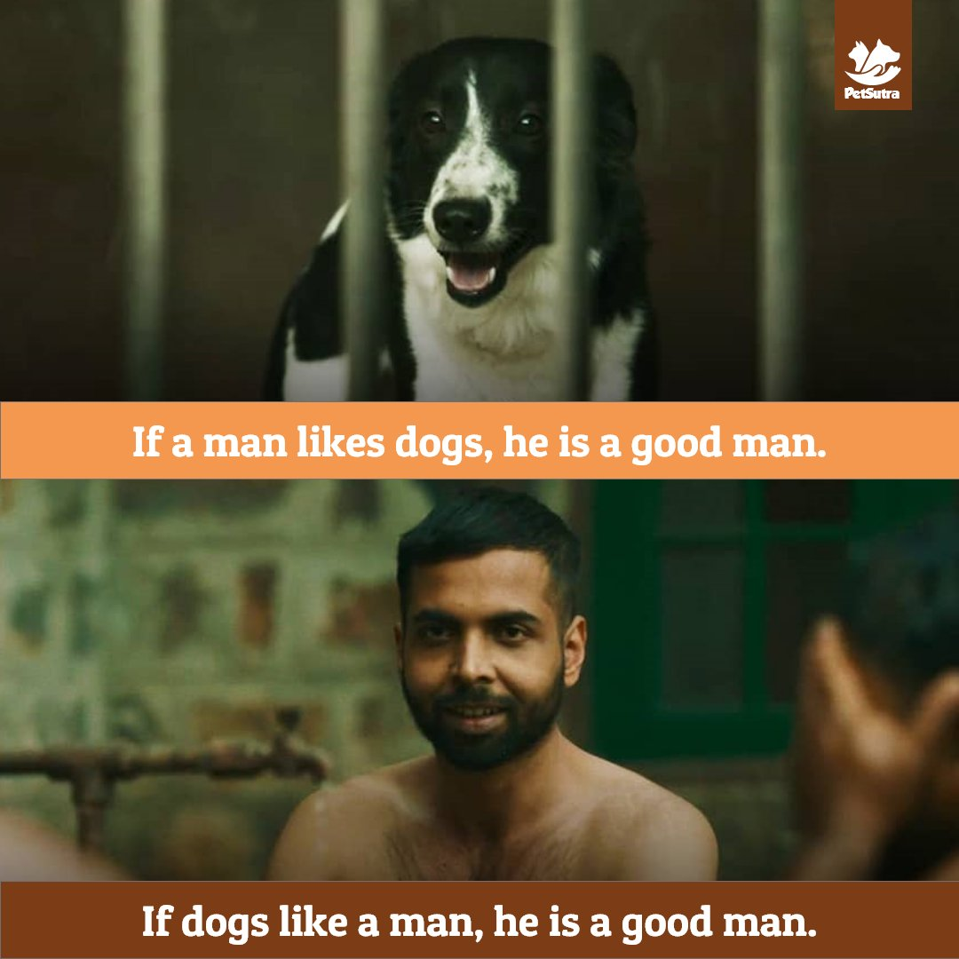 To the good bois of all Loks, you all deserve a special place in our hearts! @KunalV3rma @PrimeVideoIN @dogandpuplovers @AnanyaBal1 @VictoriaS @drkarenbecker @LeilaWhitworth @9GAG @petmemed @sarcasm_onIy @PetMemes @memeadikt @newsonpets  #paatallok #amazonprime #petsutrapic.twitter.com/7sbViPPmMX