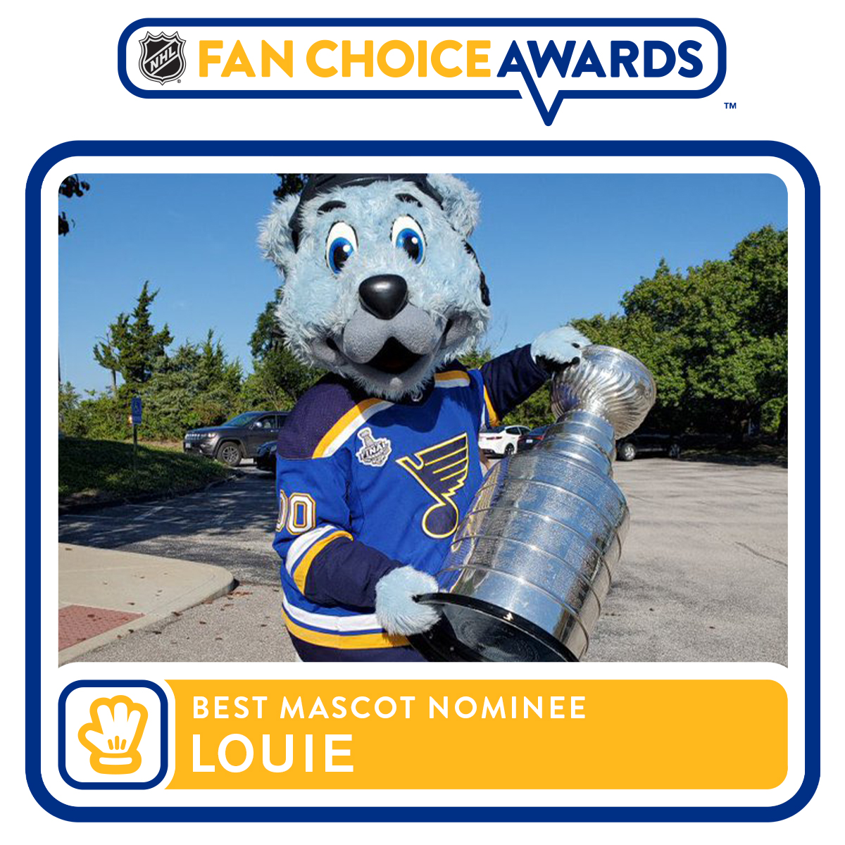 You know who to vote for. bit.ly/2xWxavz #stlblues #NHLFanChoice