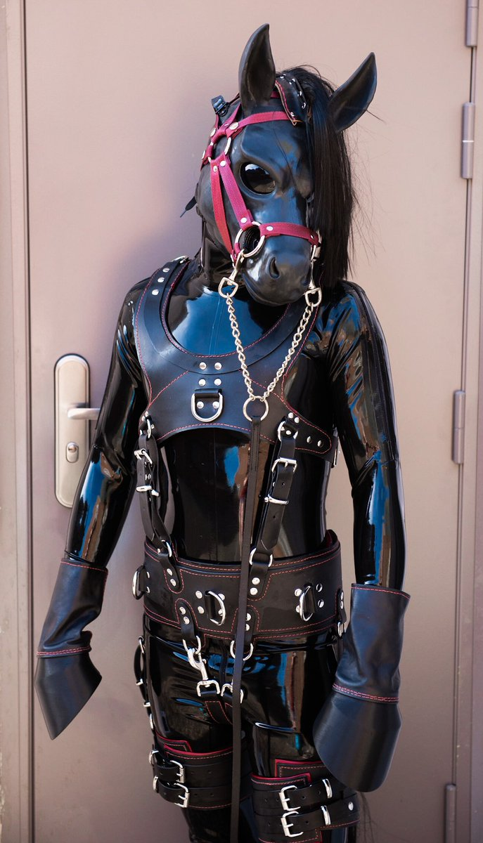Pony latex The Stables