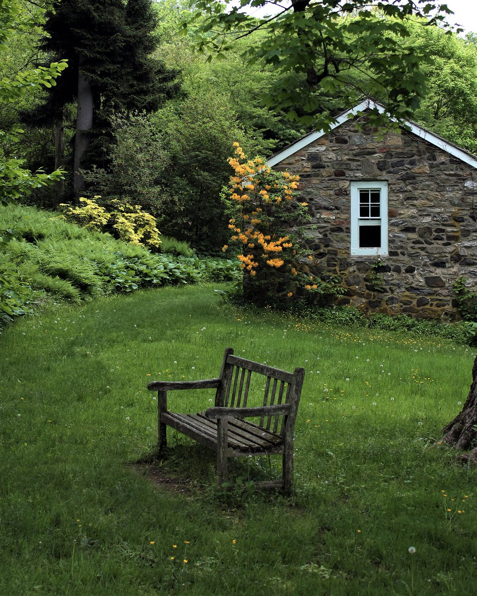Picture of: Tyler Arboretum On Twitter This Hidden Spot Below A Giant Sugar Maple Tree And Nestled Beside The Old Spring House Is A Wonderful Place To Rest How Would You Spend Your Time