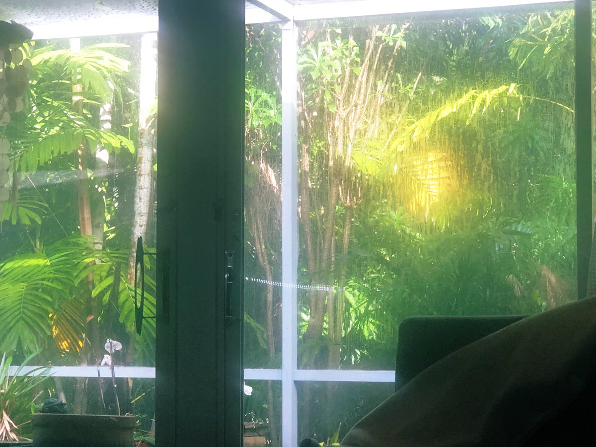 It is both pouring rain, major thunder,  and the sun shines on.   #Miami pic.twitter.com/PulPfzKcDe