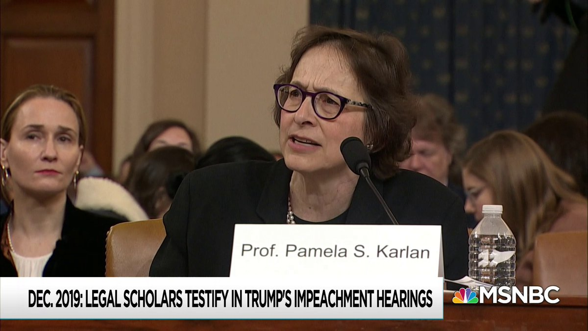 One might say, You cant make this stuff up! but Professor Pam Karlan from Stanford Law School literally made this exact thing up as a hypothetical to try to explain the cartoonishly evil nature of the presidents alleged crimes in the impeachment scandal.