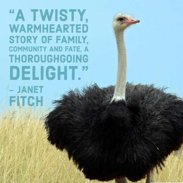 Guys, I can't go out on book tour, so I'm offering a special promotion - if you buy (or have bought) a copy of 142 OSTRICHES, I'll send a free copy to the person of your choosing. Details here: https://t.co/knliyMxrYC #giveaway #amreading #writingcommunity #142ostriches https://t.co/zyeXpnYP1o