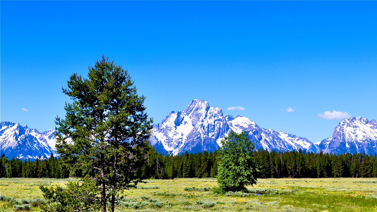 When you stop and look around, this life is pretty amazing     taken by me near Jackson, Wyoming    #naturephotography #naturelovers #naturetherapy #inspirationalquotes #beautifulworld #wyomingpic.twitter.com/PqKzbUzx0n