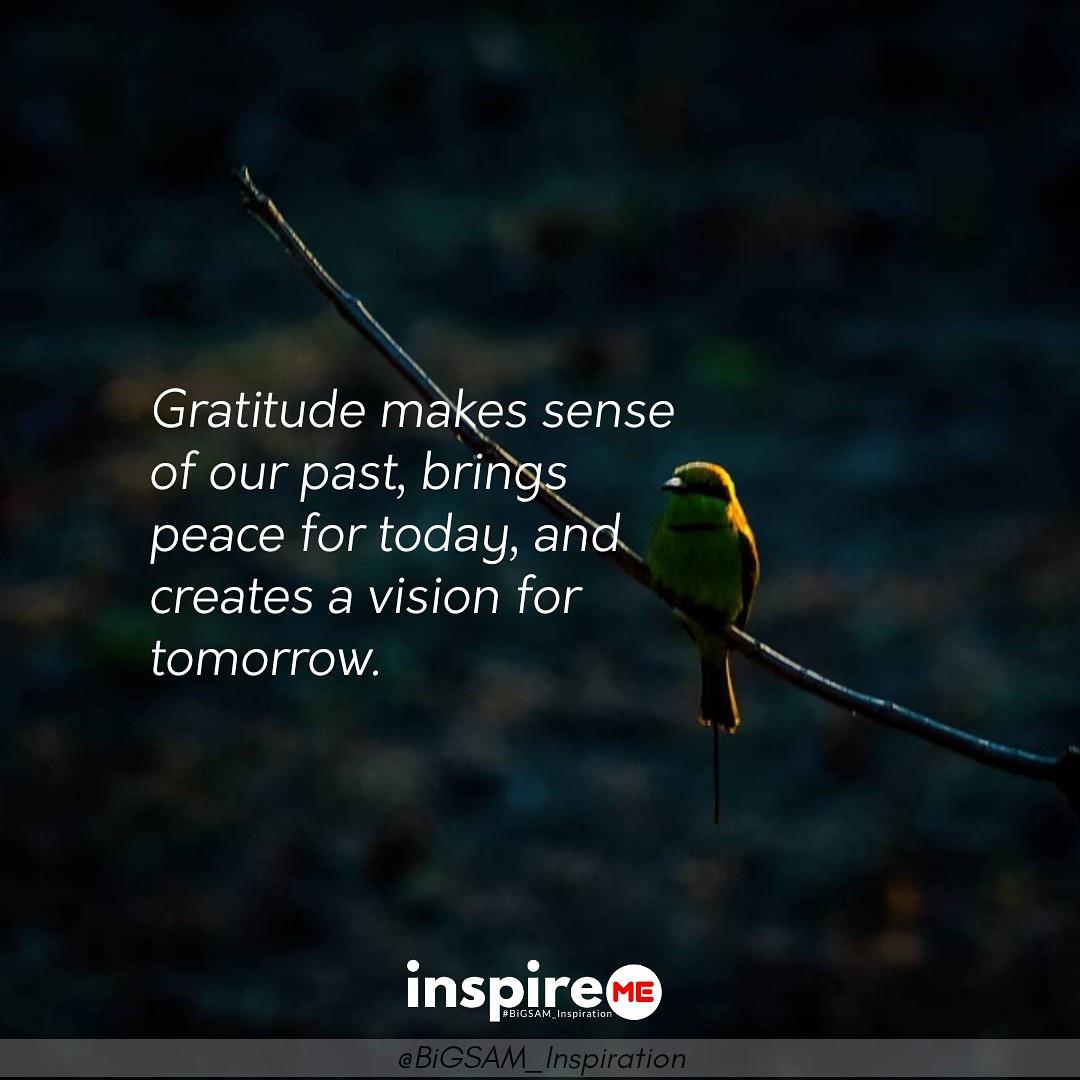 Gratitude creates a vision for tomorrow. °inspireME #thankful #thankfulthursday #BiGSAM_Inspiration #bigsam_inspiration #quote #explore #entrepreneur #encouragement #inspiration #inspireME #quote #quotes #comment #comments #TFLers #tweegram #quoteoftheday  #wordsofwisdom #true