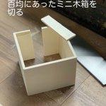ネコにコップを倒されないようにミニ木箱を作成!?実際に使ってみた結果!