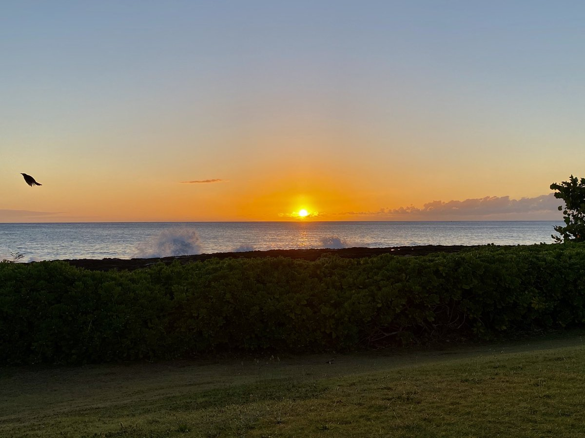 New day, different sunset, new opportunity #Hawaii #sunsetphotography #sunsetloverpic.twitter.com/gqgWtyqIRq