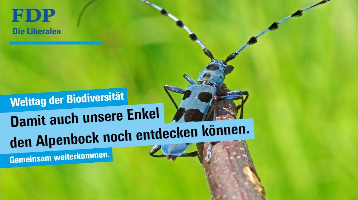 #Artenvielfalt