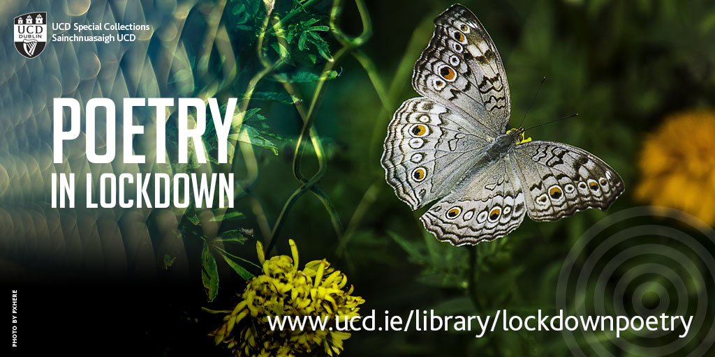 Poet or poetry reader in the UCD community? Has #poetry helped you navigate these challenging times? If so, you can help us build our Poetry in Lockdown collection. We are gathering original poems written during the lockdown in draft or final form. See ucd.ie/library/lockdo…