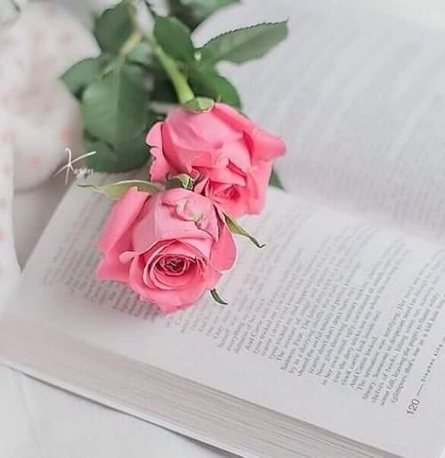 Kitap okumak boş zamanı değerlendirerek değil zaman ayırarak yapılmalıdır. Peki sizce? #anlamlısözler #kitap #kitapsızasla #kitapsever #edebiyat #okumak #kitaplariyikivar #neokusam #books #booklove #bookishpic.twitter.com/fbNCE5PVMz