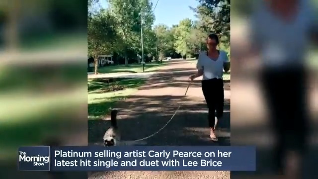 Platinum-selling artist @carlypearce talks about her new single and walking her cat with a leash 😂😹 MORE: globalnews.ca/video/6968424/… @jmacspeaks @carolynglobal #carlypearce #ihopeyourhappynow