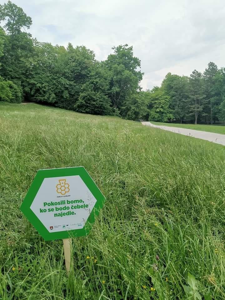 Pokosićemo kad se pčele budu najele, Ljubljana, Tivoli park.
