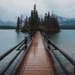 Image for the Tweet beginning: Rainy days in the Rockies.🌧️  Photo