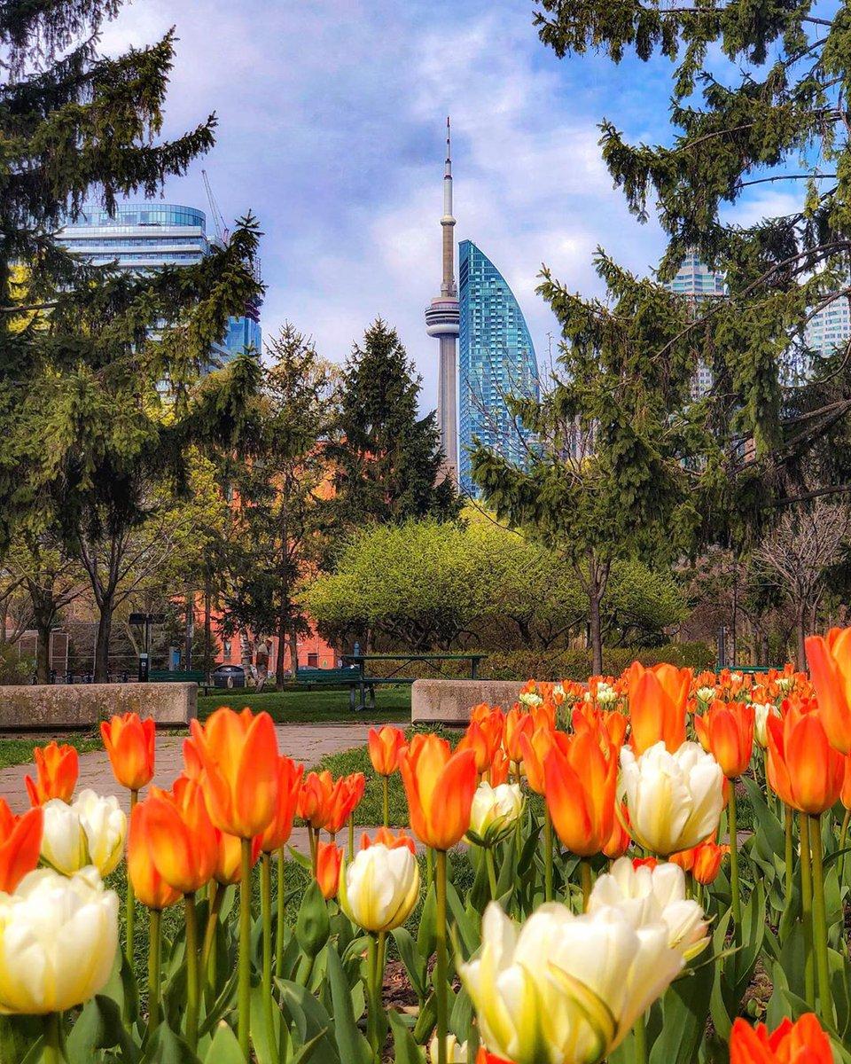 RT @SeeTorontoNow: It's beginning to feel like Spring (kind of)! Sunny days are ahead, Toronto ☀️ https://t.co/gWFxSCtwnA