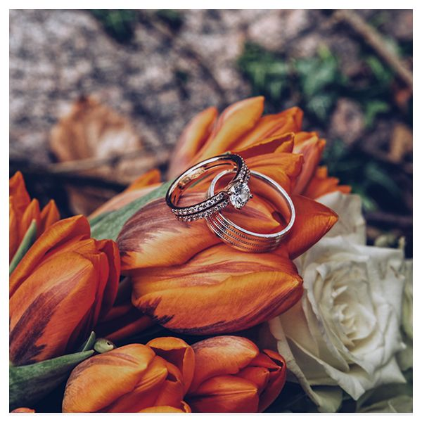 We have a very lovely set made for you  #engagementring #diamondring #weddingpic.twitter.com/tOEkh6zZPK