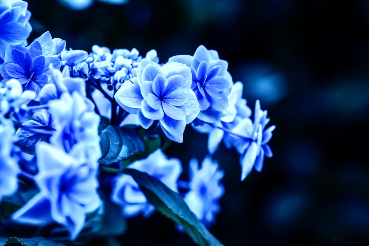 Rainy blue.  #weave_words<br>http://pic.twitter.com/VeKRPGra1v