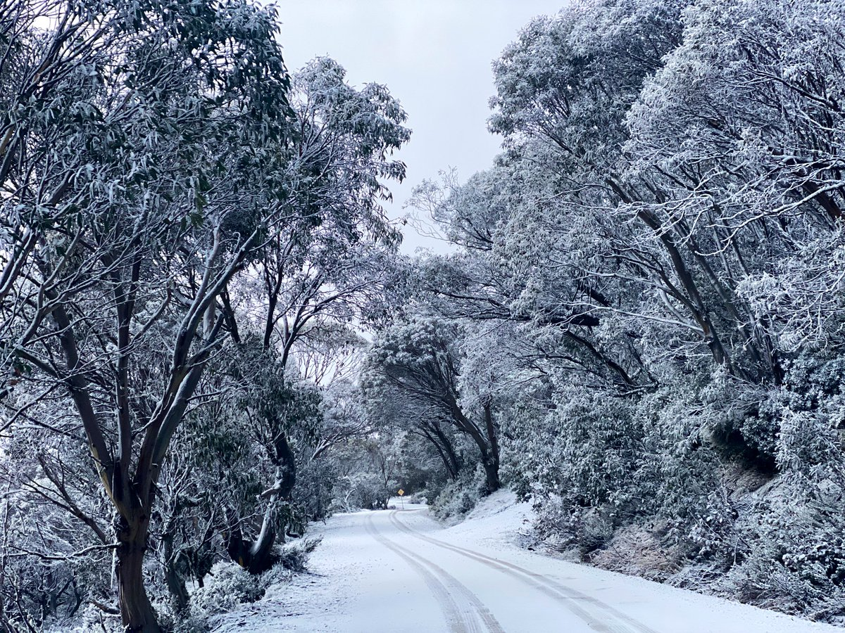 The #snowfalls continue in May! Temps down to -3°C with another dusting of #snow overnight at #FallsCreek. pic.twitter.com/2qzuF8Tv61