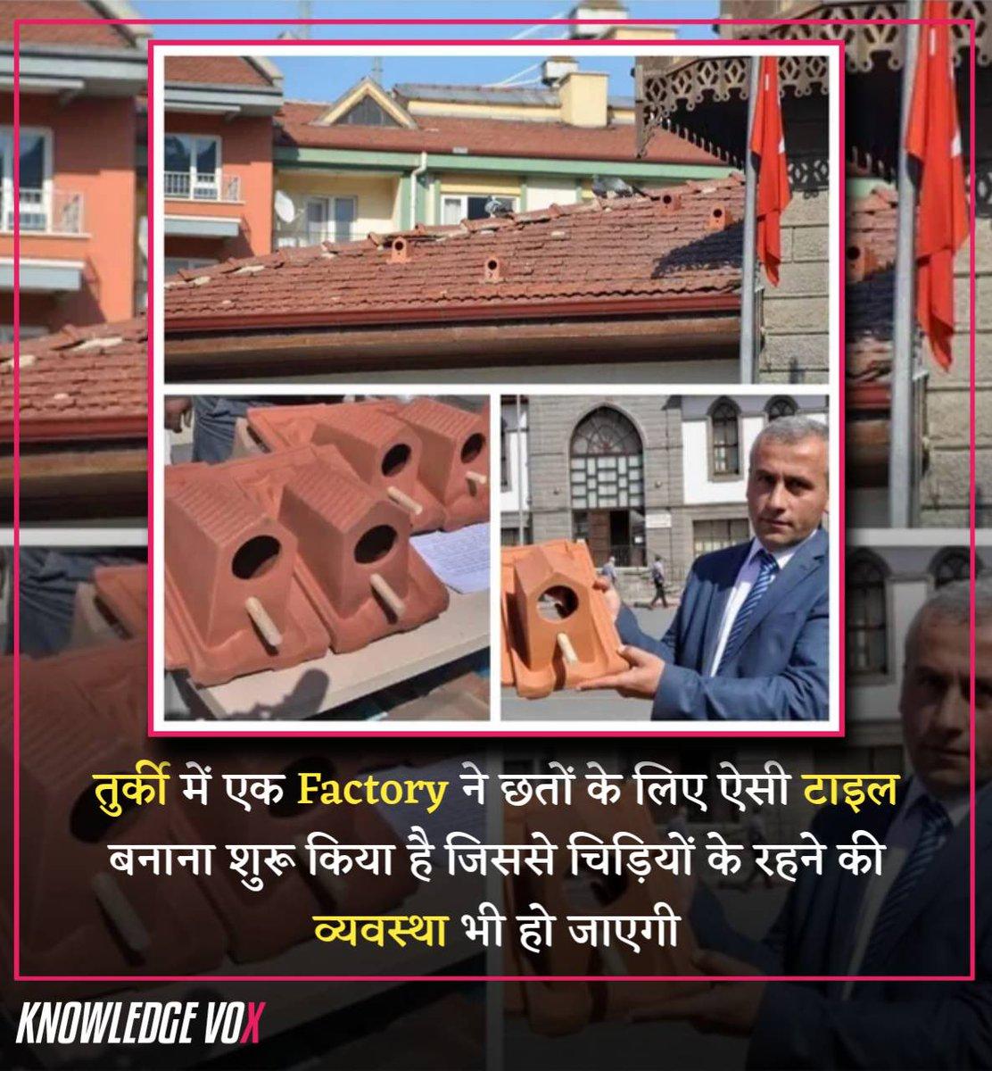 तुर्की में एक Factory ने छतों के लिए ऐसी टाइल बनाना शुरू किया है जिससे चिड़ियों के रहने की व्यवस्था भी हो जाएगी  #HindiFacts #Knowledgevox #RochakTathya #Hindipic.twitter.com/Z5dbHuYPUB