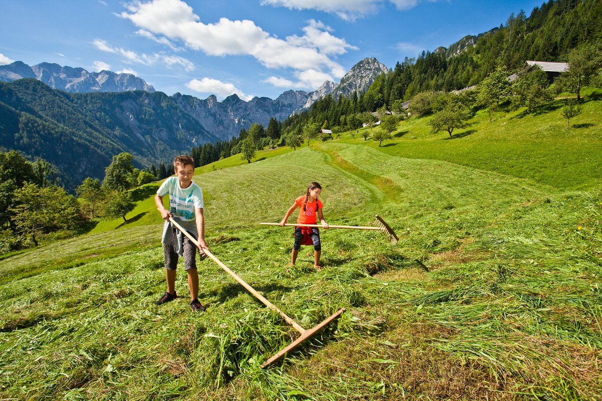 SLOVENIAN COUNTRYSIDE -#Slovenia's beauty is found not so much in its cities, but in its #green #countryside, where time passes more slowly. (photos: Jost Gantar #photography) #nature #ifeelsLOVEnia #travel #mountains pic.twitter.com/9PMVF4MZtk