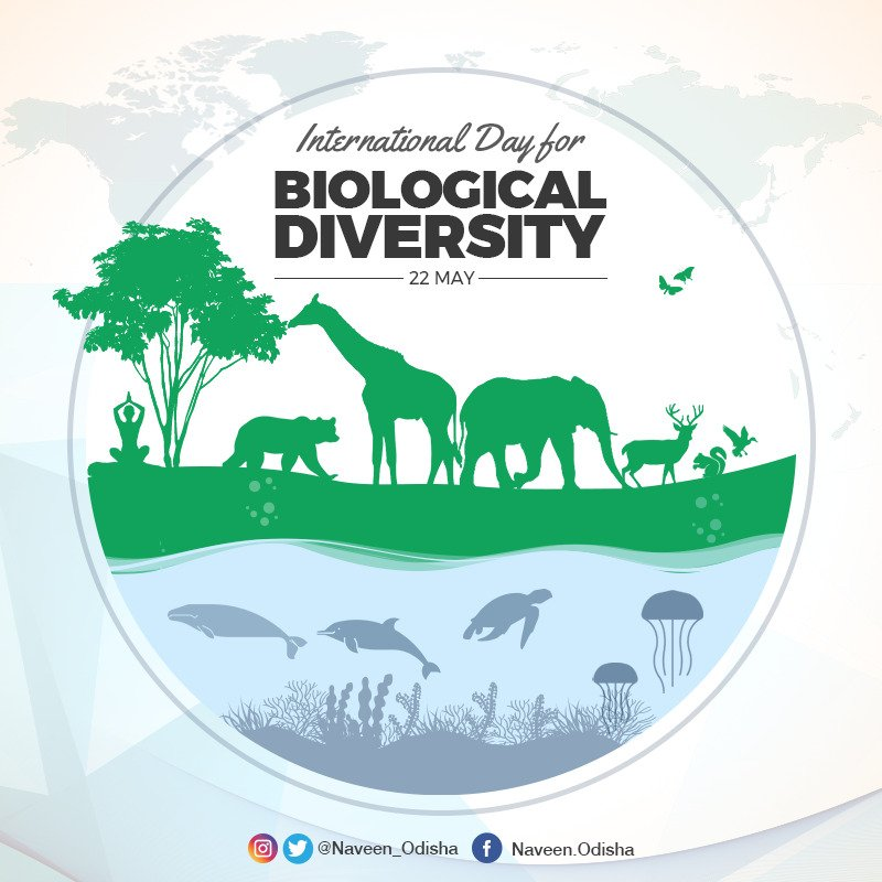 Sustainable management of biodiversity has an intimate relationship with our health, food chain, the water we drink and the air we breathe. On International #BiodiversityDay, let us all join hands to build a future for our planet in harmony with nature. https://t.co/1ZB6LpjkZl