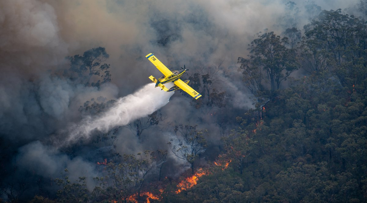 Our Daily Anti Covid 19 Pic Me Up Image is a Fire Boss LLC of R & M Aircraft Pty Ltd working on the NSW north coast for the NSW Rural Fire Service #aerialfirefighting #fireboss #airtractor #nswbushfires #instagramaviation #aviationphotography #aviationdailypic.twitter.com/bKTQt4g9qx